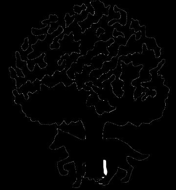 Logo entidad ZERAIN