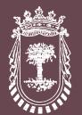Logo entidad ITSASONDO